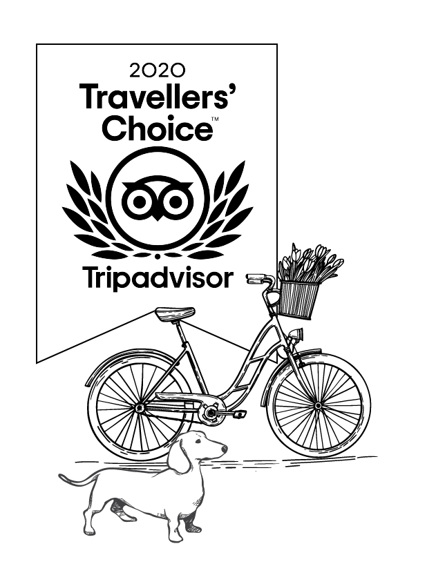 TripAdvisor_Border_Centred_Bike and dog